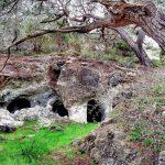 Национальные парки Кипра.Акамас.Пафос.-min